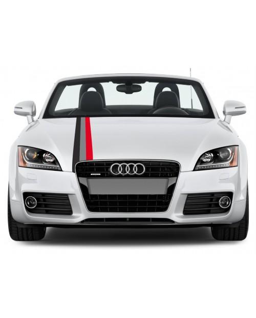 Aufkleber passend für Audi Motorsport Rally streifen Aufkleber 15cm x 125cm