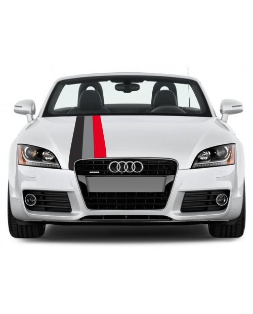 Aufkleber passend für Audi Motorsport Rally streifen Aufkleber 30cm x 125cm