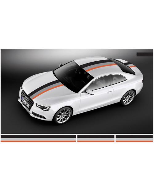 Aufkleber passend für Audi Motorsport Rally streifen Aufkleber 30cm x 500cm (2Stk. 30cm x 130cm, 1Stk. 30cm x 240cm)