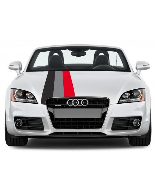 Aufkleber passend für Audi Motorsport Rally streifen Aufkleber 45cm x 125cm