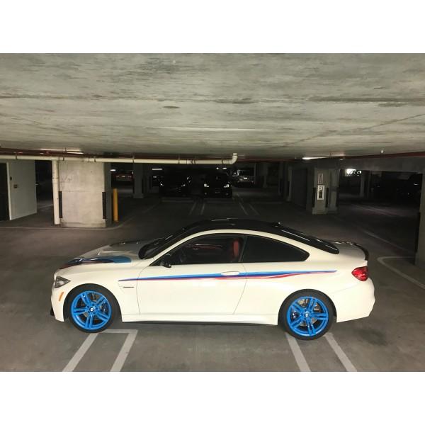 bmw pinstripe - BMW0093