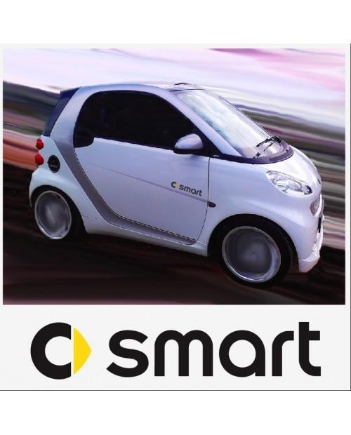 Aufkleber passend für Smart Logo Seitenaufkleber Aufkleber 2 Stk. Satz 20cm