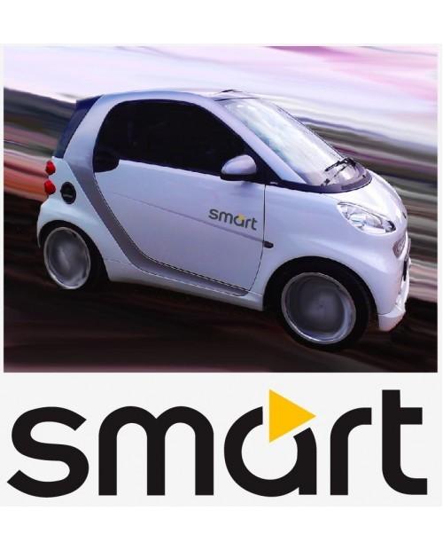 Aufkleber passend für Smart Logo Seitenaufkleber Aufkleber 2 Stk. Satz 35cm