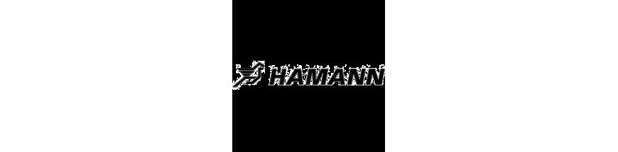 FOR HAMANN